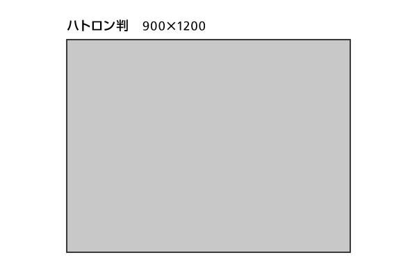dp_w-8307