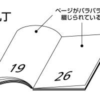 dp_w-8128